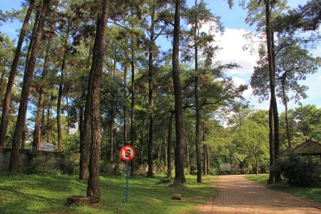 Hutan Wisata Punti Kayu memiliki luas lahan sekitar 39,9 ha dan berlokasi di tengah-tengah Kota Palembang