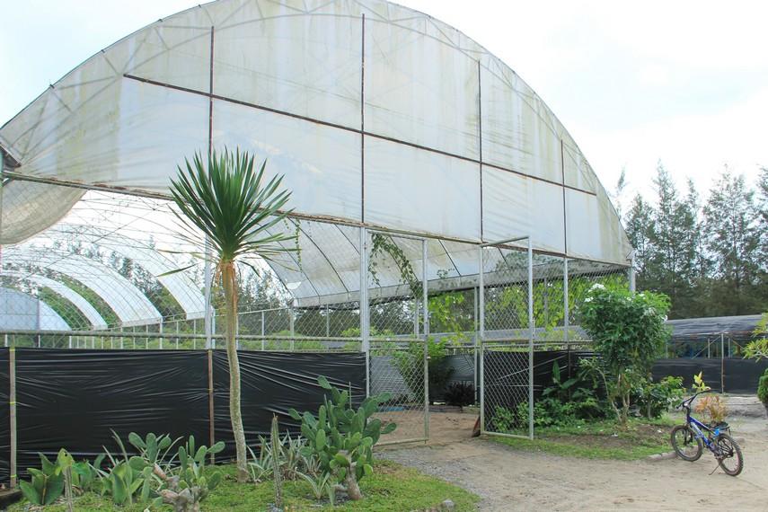Green house, tempat bibit tumbuhan dikelola dengan sangat baik