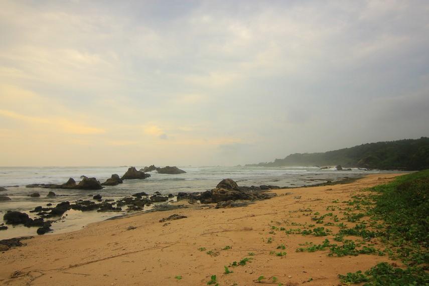 Pada sisi bagian belakang Pantai Karang Songsong, pantai ini dihiasi dengan pohon jati dan mahoni
