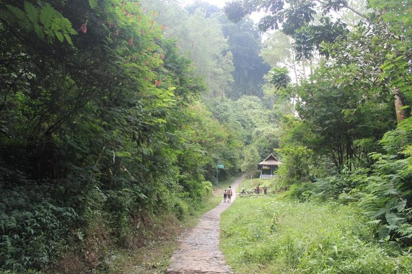 Kanopi Hutan yang rimbun sepanjang perjalanan membuat jauhnya jarak tidak terlalu terasa