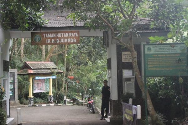 Gerbang masuk ke Taman Hutan Raya Djuanda dari sisi Dago Pakar