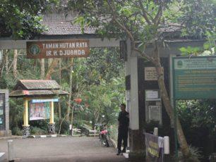 Berwisata Alam ke Taman Hutan Raya Djuanda