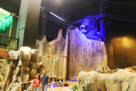 Merasakan memanjat tebing curam di Kong Climb