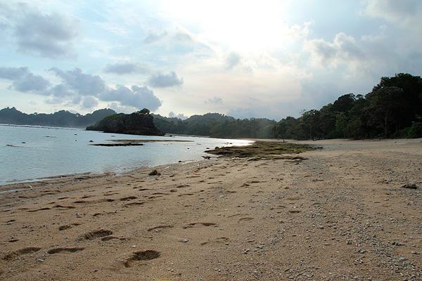 Hamparan pasir putih lembut menjadi pemandangan yang disajikan Pantai Kondang Merak