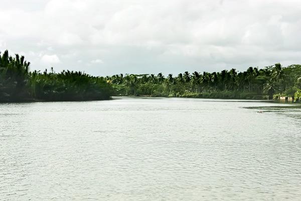 Arus Sungai Cijulang yang tenang membuat sungai ini terasa begitu nyaman untuk diarungi