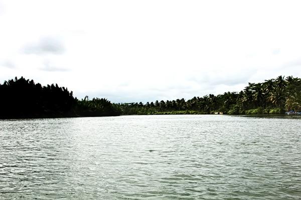 Banyaknya pohon yang berada di kanan-kiri sungai membuat perjalanan mengarungi sungai terasa begitu teduh