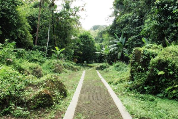 Pengunjung harus melalui jalan setapak ini yang untuk bisa menuju Sungai Citumang