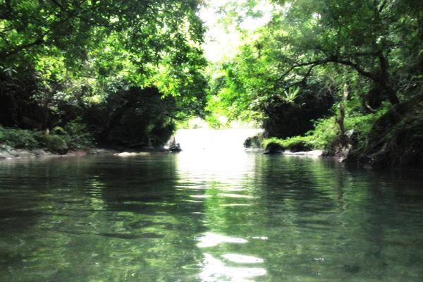 Pepohonan yang tumbuh di kanan-kiri sungai membuat pemandangan di sekitar Sungai Citumang begitu asri