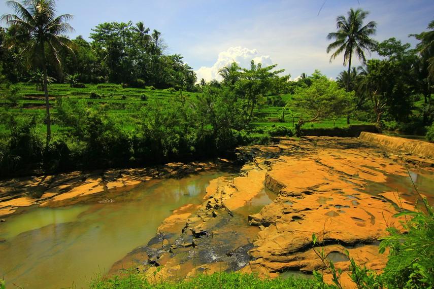 Pemandangan hijaunya pepohonan menjadi teman perjalanan menuju Air Terjun Luhur