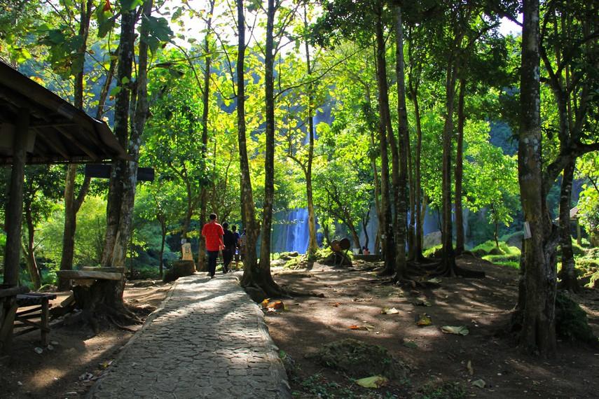 Rute jalan yang dapat di tempuh pengunjung yang ingin berjalan kaki menuju Air Terjun Cikaso