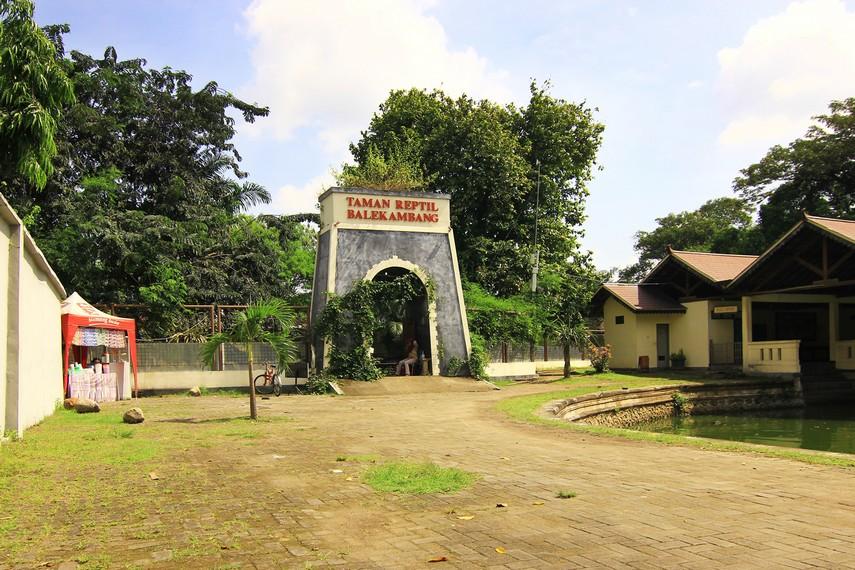 Taman Reptil diresmikan pada tahun 2012 atas kerjasama pemerintah Surakarta dengan komunitas pecinta reptil