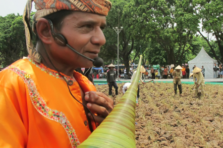 Peniup pupuik batang padi meniup alat musik tradisional ini untuk mengiringi perayaan panen raya