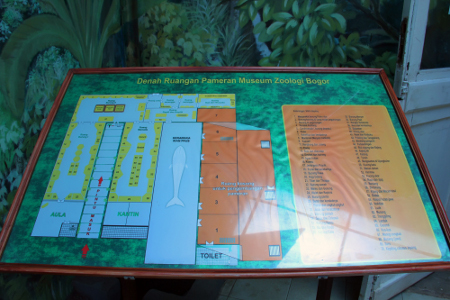 Denah Museum Zoologi Bogor. Museum ini berlokasi di Jalan Ir. H. Juanda No 9