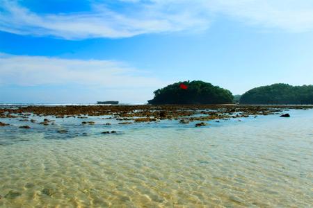 Selain pemandangannya indah, Pantai Balekambang juga memiliki air yang jernih