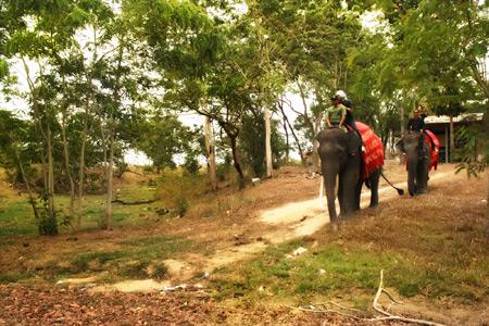 Perjalanan tur menaiki gajah mengelilingi kawasan ini bisa memakan waktu antara 30 menit hingga 1 jam