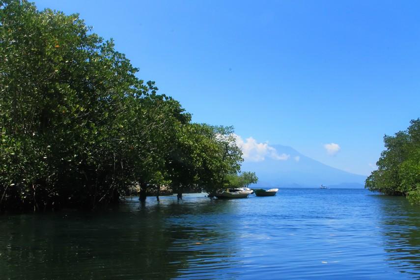 Panorama Gunung Agung yang menjulang dapat terlihat di antara kerimbunan bakau di Nusa Lembongan