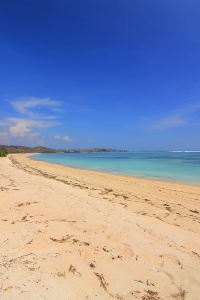 Kesan alami masih sangat terasa ketika mengunjungi Pantai Seger
