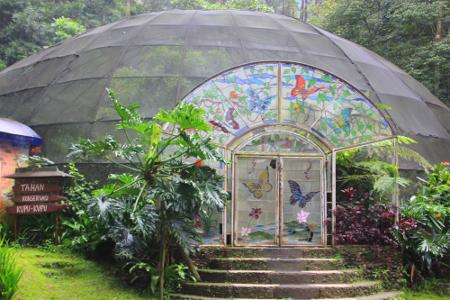 Taman kupu-kupu menjadi bagian wahana yang dapat dinikmati di Curug 7 Cilember