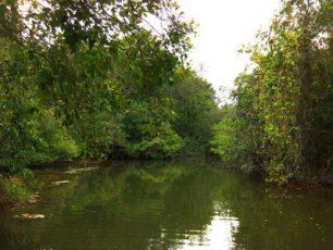 Way Kanan, Destinasi bagi Pecinta Wisata Minat Khusus