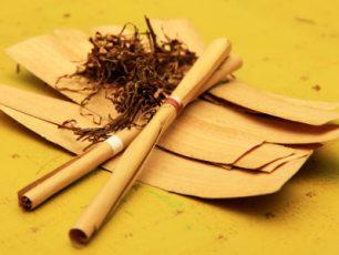Inilah Rokok Khas Masyarakat Sumbawa