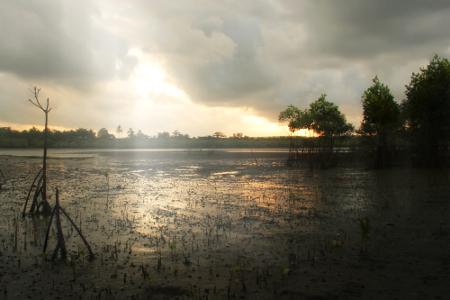 Danau yang menjadi latar belakang Pantai Cijulang menjadi keunikan tersendiri ketika berada di pantai ini