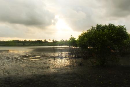 Pantai Cijulang menjadi salah satu pantai indah yang letaknya berada di Kawasan Pangandaran
