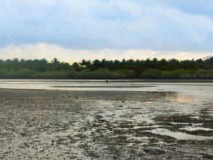Pertunjukan Sang Surya Tenggelam di Pantai Cijulang