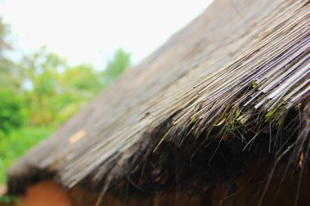 Rumah di Kampung Dukuh masih mempertahankan tradisi dengan menggunakan jerami sebagai bahan untuk atap