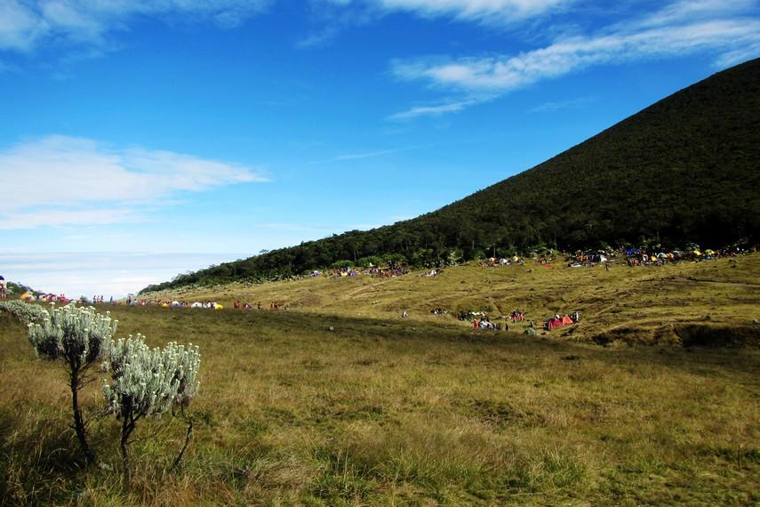 Alun-alun Surya Kencana merupakan tempat yang digemari para pendaki untuk bermalam dan membuka tenda