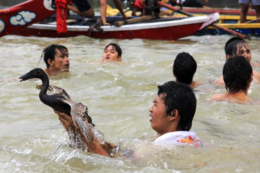 Seorang peserta berhasil menangkap seekor bebek dalam tradisi lempar bebek di Sungai Cisadane