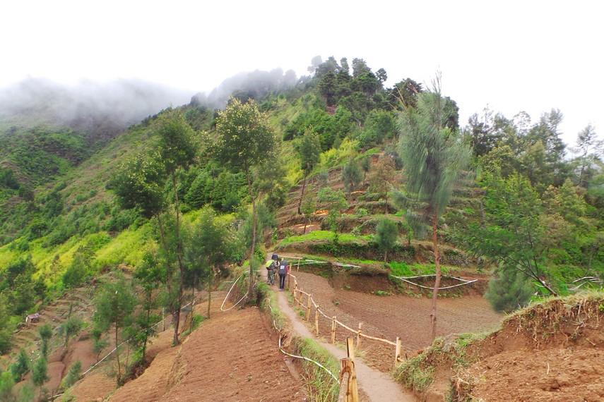 Jalur pendakian untuk sampai ke puncak Gunung Prau salah satunya melalui Desa Patak Banteng, Dieng, Jawa Tengah