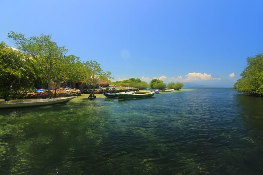 Hutan mangrove Nusa Lembongan terletak di sekitar Pantai Jungut Batu, bagian timur pulau ini