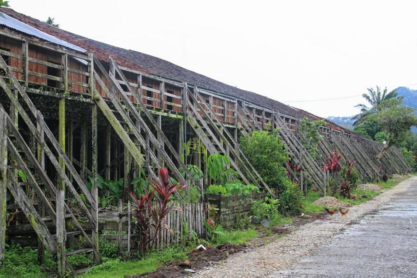Konsep rumah tradisional suku Dayak biasanya sangat dekat dengan kebudayaan dan alam