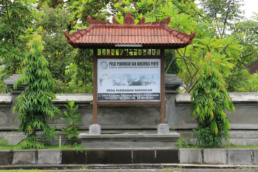 Pusat Pendidikan dan Konservasi Penyu beralamat di Jalan Tukan Wisata no. 4, Pulau Serangan