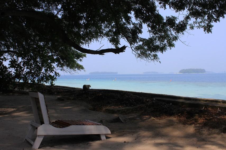 Taman Nasional Kepulauan Seribu terdiri dari ratusan pulau menawan, salah satunya adalah Pulau Sepa
