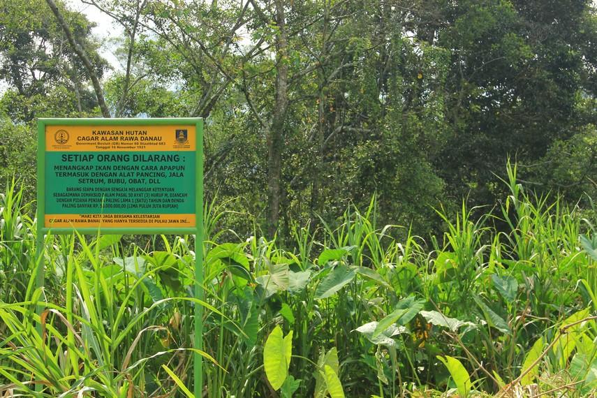Cagar Alam Rawa Danau menjadi salah satu hutan air tawar terbesar yang ada di Pulau Jawa