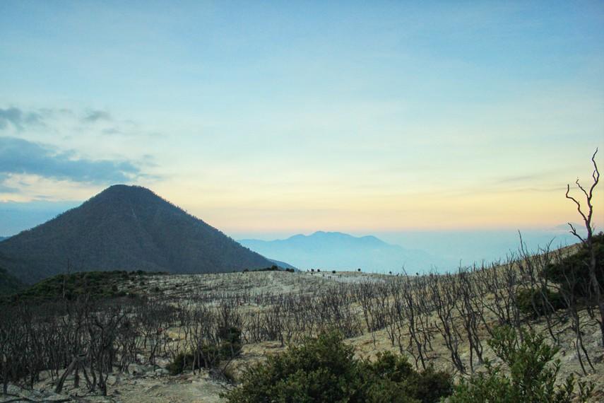Kawasan Hutan Mati merupakan salah satu bagian eksotis dari Gunung Papandayan