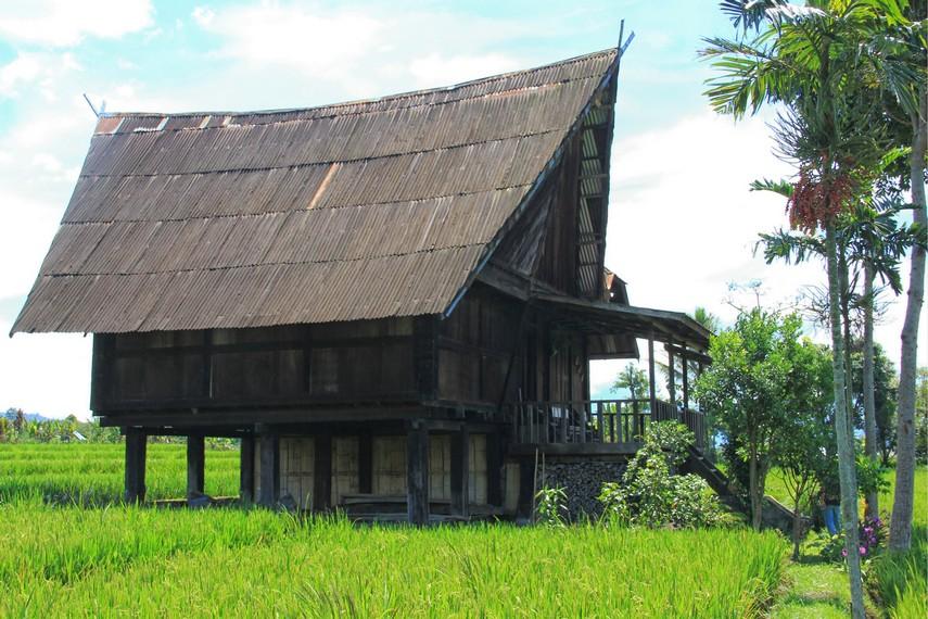 Rumah Baghi merupakan rumat adat yang sudah digunakan sejak beratus tahun lampau oleh para nenek moyang masyarakat Besemah, Pagaralam