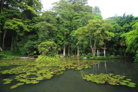 Balong Keramat Darmaloka memiliki arti nama kolam yang keramat