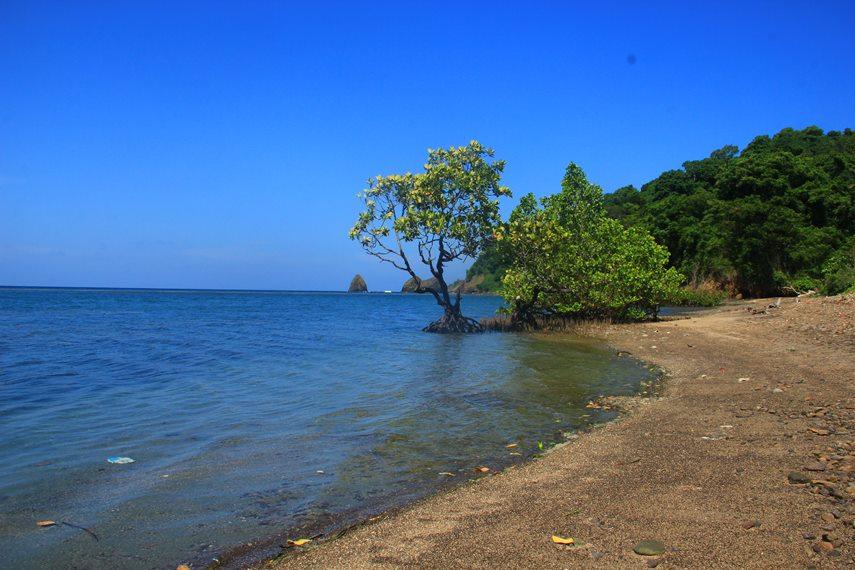 Sebagai destinasi wisata alam yang belum terekspose, pulau ini menyuguhkan berbagai aktivitas wisata bahari, mulai dari memancing, snorkeling, hingga diving
