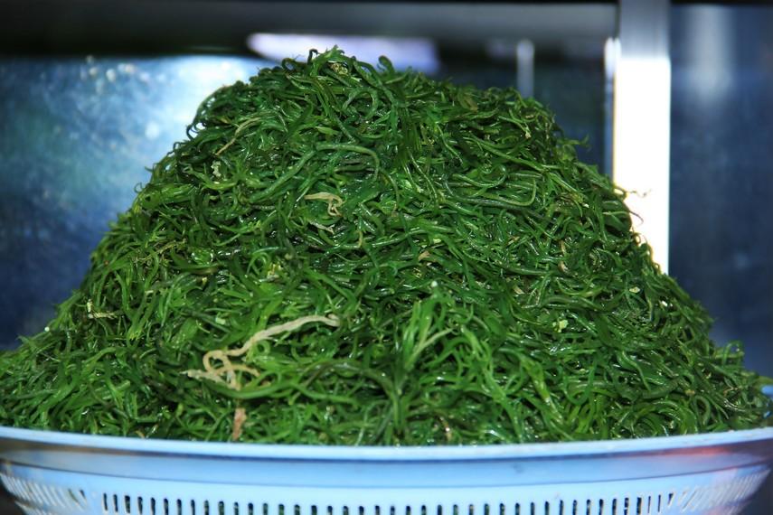 Bulung hijau diperoleh dari hasil perendaman rumput laut dengan kapur sirih