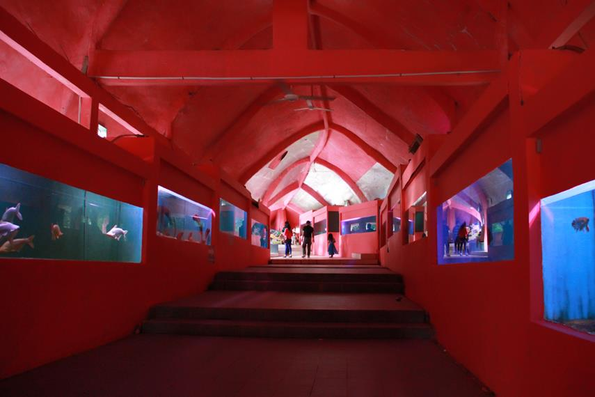 Sinka Island Park merupakan kawasan wisata terpadu yang memiliki pesona pantai yang masih alami dan ada juga kebun binatang Sinka Zoo