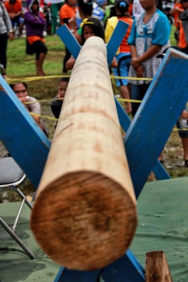 Pertandingan behempas bantal berlangsung di atas sebatang kayu sepanjang 3 meter yang bergantung setinggi 120 cm