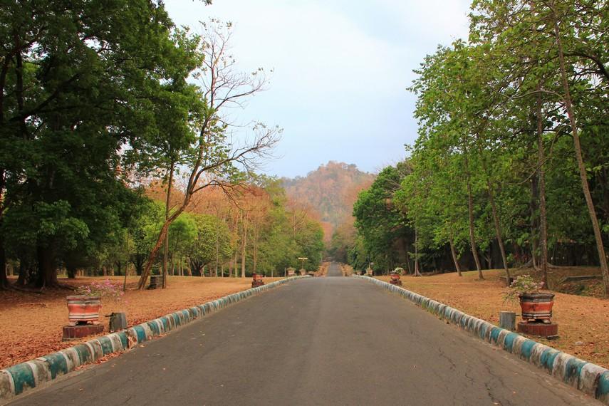 Lokasi kebun raya berjarak sekitar 24 km dari pusat Kota Malang, 30 km dari Pasuruan, dan sekitar 65 km dari Kota Surabaya