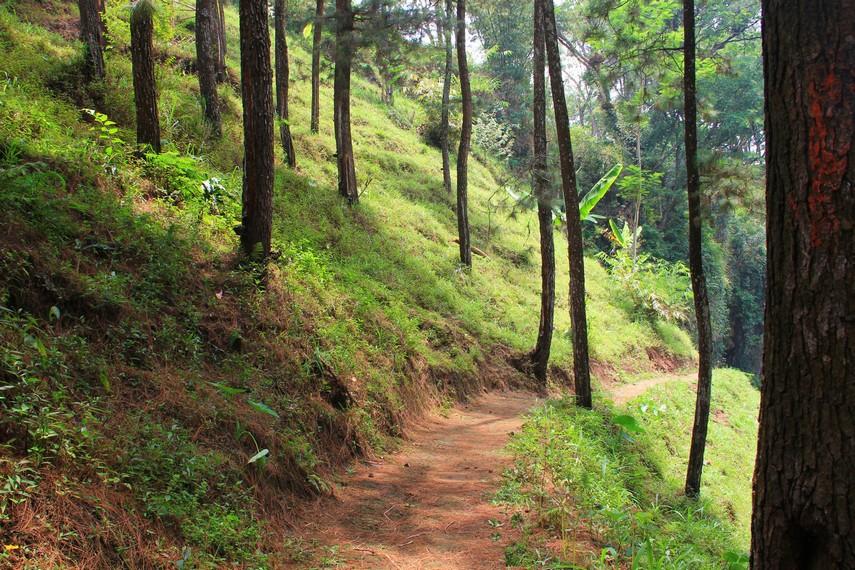 Menuju Gua Kaneng dari Alun-Alun Kota Pasuruan menempuh jarak sekitar 35 km atau menghabiskan waktu tempuh tidak lebih dari 1 jam perjalanan
