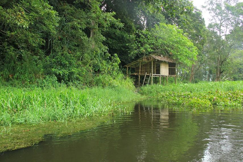 Bagi pengunjung yang ingin melihat Cagar Alam Rawa Danau, sebaiknya berkonsultasi dengan pegawai Balai Konservasi Sumber Daya Alam (BKSDA) Kota Serang