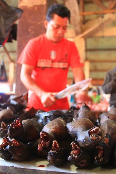 Nama Pasar Tomohon membuat wisatawan mancanegara yang berkunjung ke Sulawesi Utara penasaran dengan keunikannya