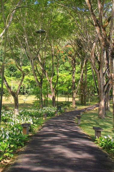 Dibangun di atas lahan sekitar 80 hektar, Bukit Doa  diperuntukan khusus bagi mereka umat Katolik yang mendambakan tempat ibadah hening nan sejuk