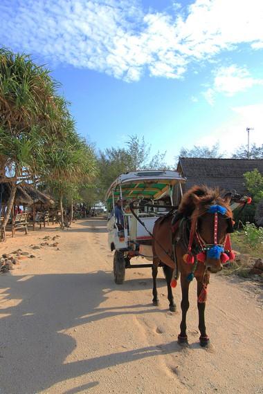 Wisatawan dapat menjumpai Cidomo di beberapa tempat, salah satunya di kawasan Gili Meno