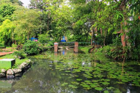 Balong Keramat Darmaloka menempati lahan seluas kurang lebih 3 hektar dengan pepohonan hijau yang mengelilinginya